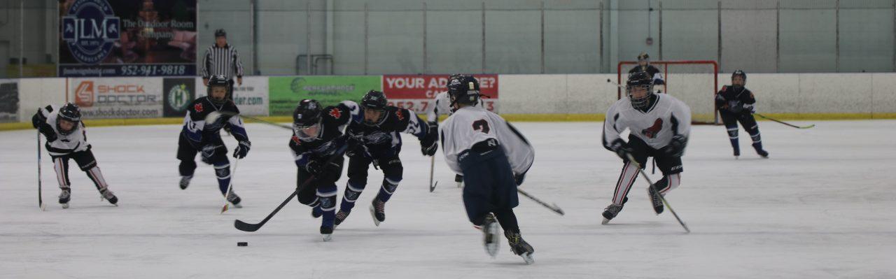 Minnesota Made Ice Center
